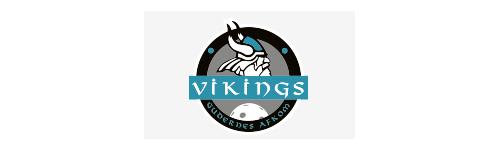Hvalsø Vikings Floorball Klub