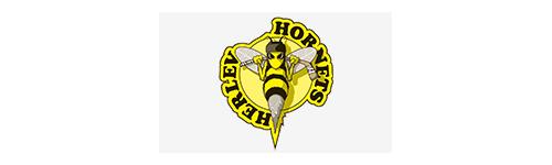 Ishockey - Herlev Hornets
