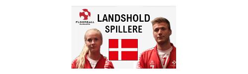 Landshold Spillere